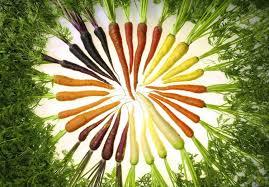 Carrots galore!
