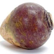 The Splendid Rutabaga.