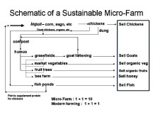 Model for a sustainable agricultural setup.